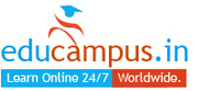 Online Diploma in Entrepreneurship Program: